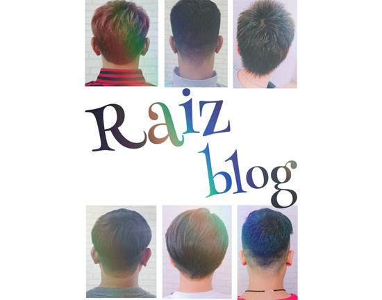 Blog Raizブログ